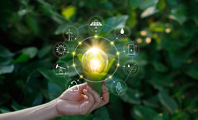 online-sustainability-course