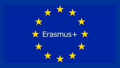 Photo of Erasmus+ ESC Stars of Europe Online Course