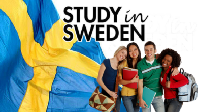 Photo of Swedish Institute Scholarships for Global Professionals