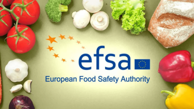 Photo of EFSA Traineeship Italy Fully Funded