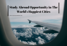 Photo of Study Abroad Opportunity in The World's Happiest Cities