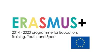 Photo of Erasmus+ Online Seminar Austria